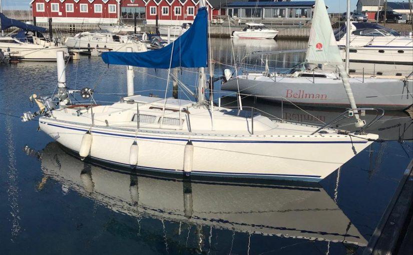 Birdie 24 за 2250 евро, с кучей оборудования и 4х тактным подвесным двигателем